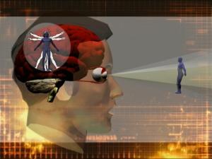 Wir sehen nur, was unser Gehirn erlaubt