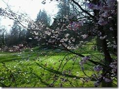 Frühling in Baden-Baden